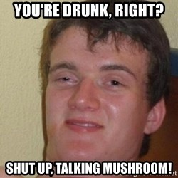 really high guy - You're drunk, right? shut up, talking mushroom!