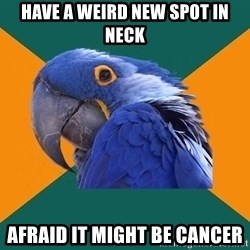 Paranoid Parrot - have a weird new spot in neck Afraid it might be cancer
