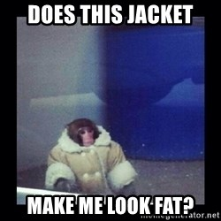 Darwin The ikea Monkey - does this jacket make me look fat?