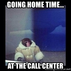 Darwin The ikea Monkey - going home time... at the call center