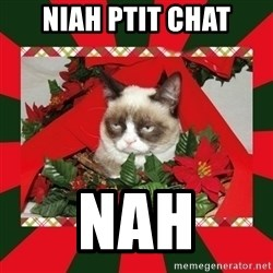 GRUMPY CAT ON CHRISTMAS - niah ptit chat nah
