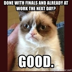 Tard the Grumpy Cat - Done with finals and already at work the next day? good.