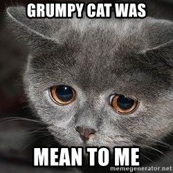 Sadcat - grumpy cat was mean to me