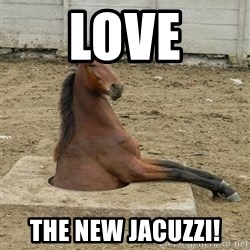 Hole Horse - love the new jacuzzi!