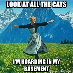 Look at all the things - LOOK AT ALL THE CATS I'M HOARDING IN MY BASEMENT