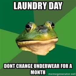 Foul Bachelor Frog - laundry day dont change underwear for a month
