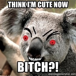 Abortion Koala - THINK I'M CUTE NOW BITCH?!