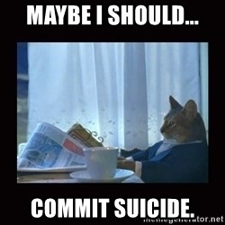 i should buy a boat cat - maybe i should... commit suicide.