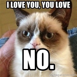 Grumpy Cat  - i love you, you love no.