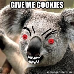 Abortion Koala - give me cookies