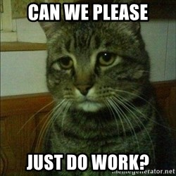 Depressed cat 2 - can we please just do work?