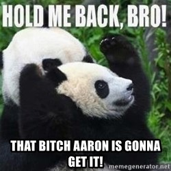 Hold me back panda -  THAT BITCH AARON IS GONNA GET IT!