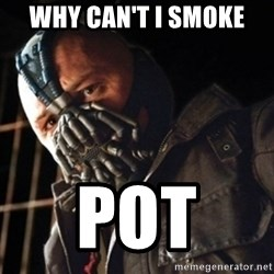 Only then you have my permission to die - WHY CAN'T I SMOKE  POT