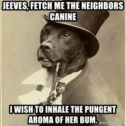 rich dog - Jeeves, fetch me the neighbors canine I wish to inhale the pungent aroma of her bum.