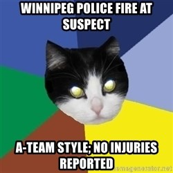 Winnipeg Cat - winnipeg police fire at suspect a-team style; no injuries reported