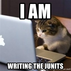 cat computer - I AM WRITING THE Junits