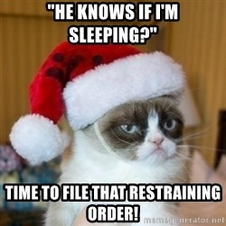 """Grumpy Cat Santa Hat - """"He knows if I'm sleeping?"""" Time to FiLe that Restraining order!"""