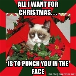 GRUMPY CAT ON CHRISTMAS - All I want for christmas. . .  is to punch you in the face