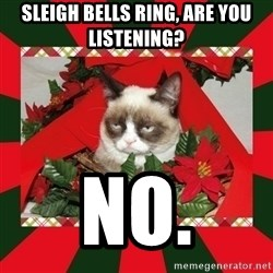 GRUMPY CAT ON CHRISTMAS - sleigh bells ring, are you listening? no.