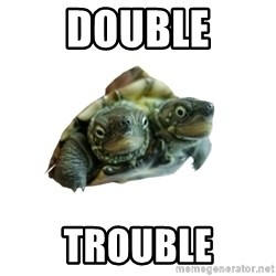 Tips Only Two-Headed Turtle - DOUBLE TROUBLE