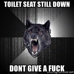 Insanity Wolf - toilet seat still down dont give a fuck