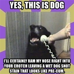 Yes, this is dog! - Yes, This is dog i'll certainly ram my nose right into your crotch leaving a wet dog snot stain that looks like pre-cum.