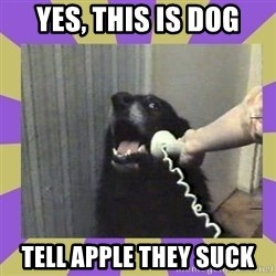 Yes, this is dog! - yes, this is dog tell apple they suck