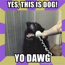 Yes, this is dog! - YES, THIS IS DOG! YO DAWG