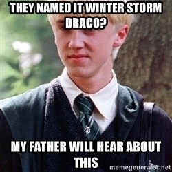 Draco Malfoy - They named it Winter StorM draco? My father will hear about this