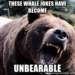 Bear week - these whale jokes have become unbearable