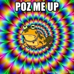 hypno toad - poz me up