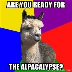 Arashian Alpaca - Are you ready for  the alpacalypse?