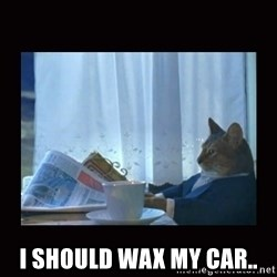 i should buy a boat cat - I should wax my car..