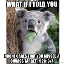 surprised koala - what if i told you noone cares that you missed a cnvass target in 2013/4