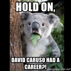 Koala can't believe it - HOLD ON, DAVID CARUSO HAD A CAREER?!