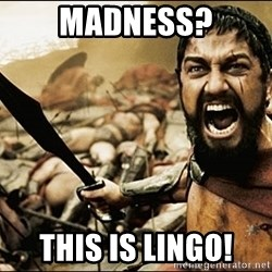 This Is Sparta Meme - madness? this is lingo!