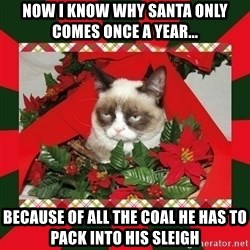 GRUMPY CAT ON CHRISTMAS - now i know why santa only comes once a year... because of all the coal he has to pack into his sleigh
