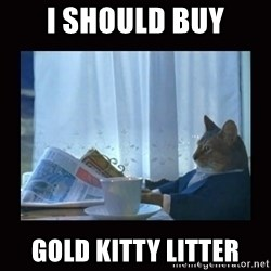 i should buy a boat cat - i should buy gold kitty litter
