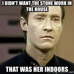 Star Trek Data - i didn't want the stone work in the house that was her indoors