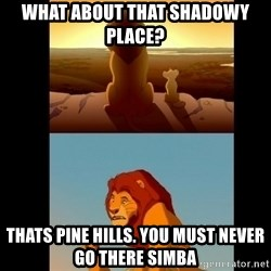 Lion King Shadowy Place - What about that shadowy place? thats pine hills. you must never go there simba