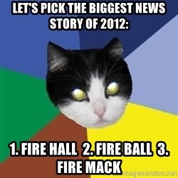 Winnipeg Cat - let's pick the biggest news story of 2012: 1. Fire Hall  2. Fire Ball  3. FIRE MACK