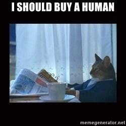 i should buy a boat cat - I Should Buy a human