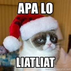 Grumpy Cat Santa Hat - apa lo liatliat