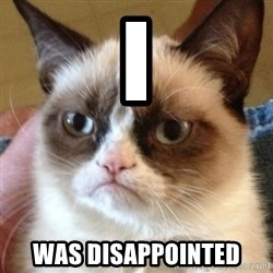 Madcat - I  was DISAPPOINTED