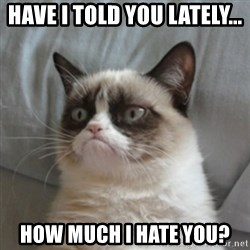 Grumpy Cat 10 - HAve I told you lately... How much I hate you?