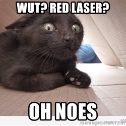 Paranoid cat - Wut? red laser? OH NOES
