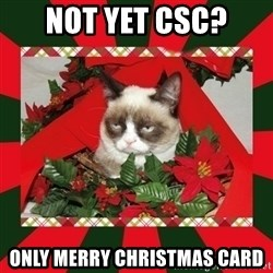 GRUMPY CAT ON CHRISTMAS - Not yet csc? only merry christmas card