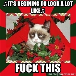 GRUMPY CAT ON CHRISTMAS - ♫It's begining to look a lot like♫ fuck this