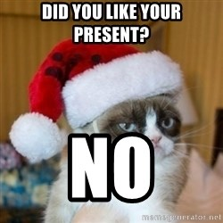 Grumpy Cat Santa Hat - Did you like your present? no