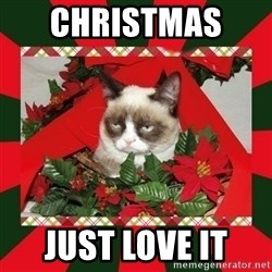 GRUMPY CAT ON CHRISTMAS - Christmas   Just love it
